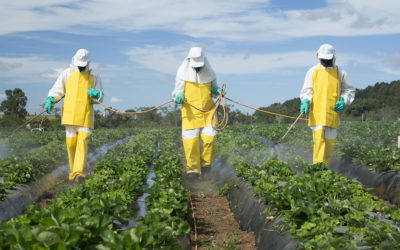 Senator Santarsiero Proposes Bill Banning the Harmful Pesticide Chlorpyrifos